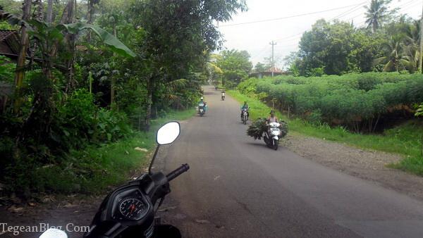 Jalan desa yang mulus :)
